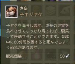 3月3日子キジヤタ