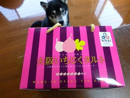 みどり製菓28