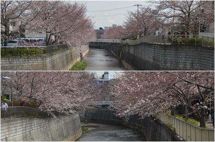 2018-03-24_38.jpg