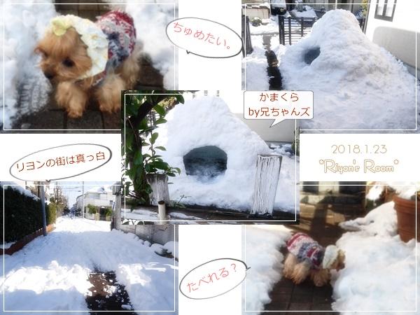 雪とリヨン①