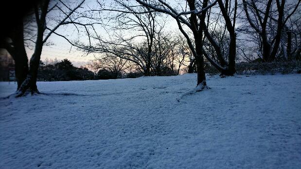 雪景色2180212