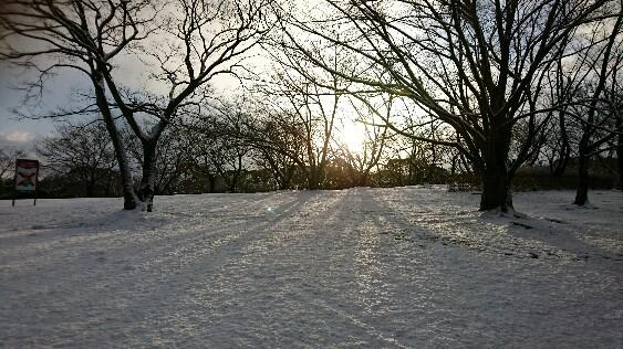 雪景色3180212