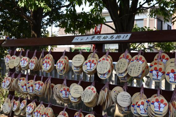 朝日氷川神社⑤