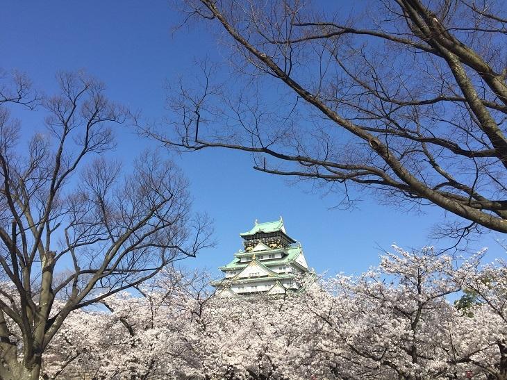 IMG_4279大阪城