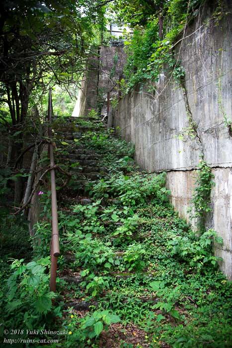 【田老鉱山】草木に埋もれる階段