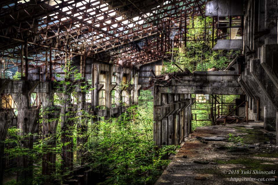 【田老鉱山】緑に飲まれつつある選鉱場
