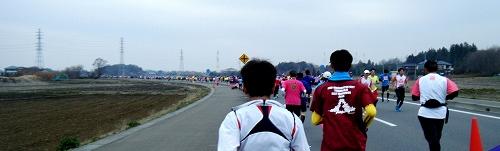 古河はなももマラソン02