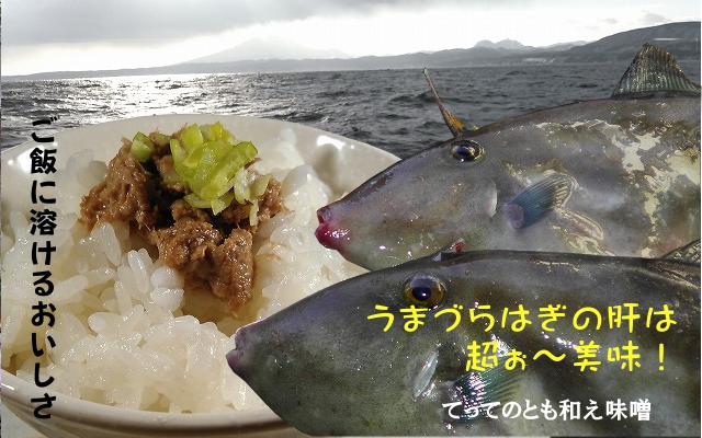 kimomiso001.png