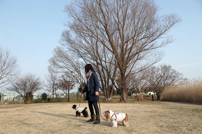 blogDSC05604.jpg