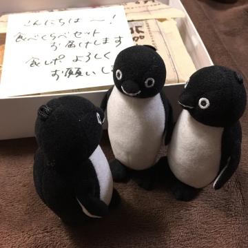 20180316-消防犬ぶん公さんより (3)