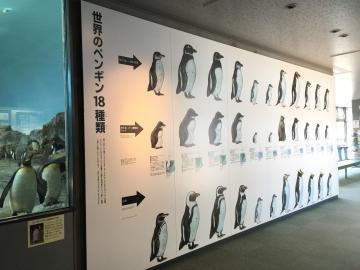20180323-展示 (1)