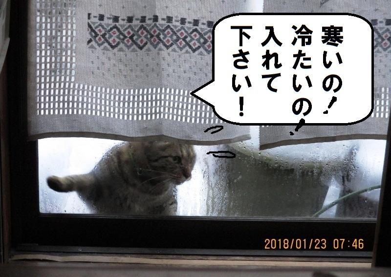 2018yukikan.jpg