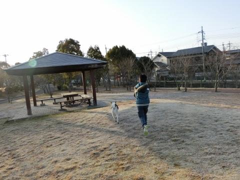 2018-03-11 散歩で 027 (480x360)