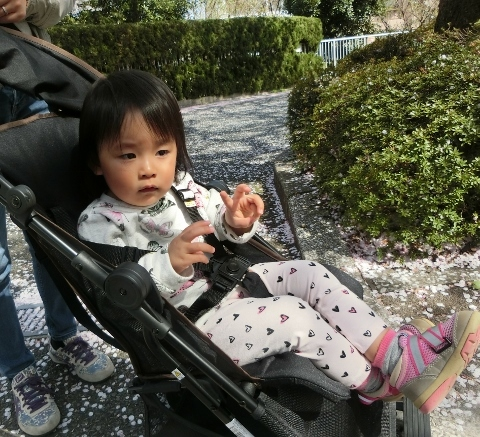 2018-03-31 東京 006 (480x437)