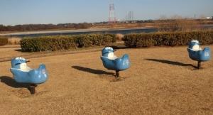 天竜川緑地14