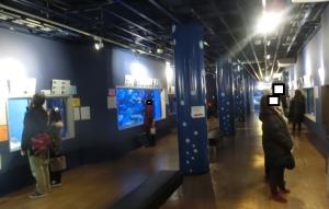 竹島2018年2月-3
