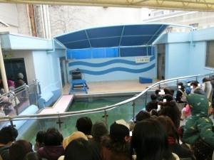 竹ショー2018-2-1
