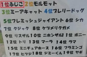 岡崎友人1-3
