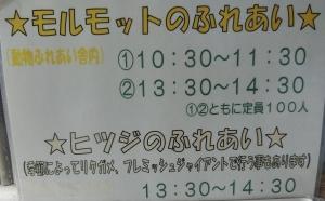岡崎友人19-1