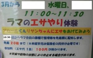 岡崎友人10-2