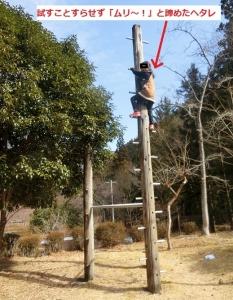 草履石公園7