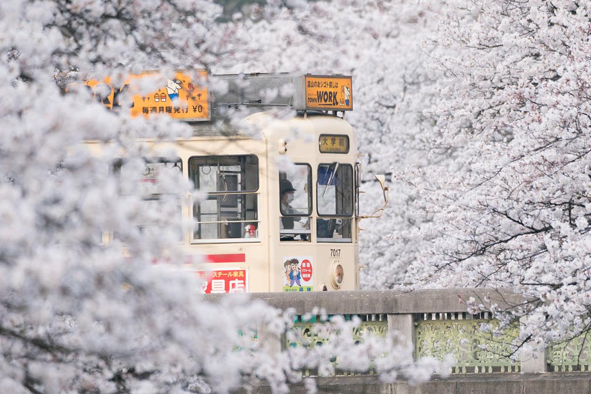 shiden-A9_03298.jpg