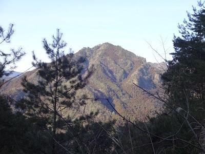 高畑山DSC05881