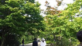 20171009昭和記念公園(その15)