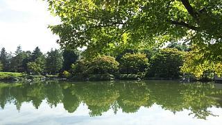 20171009昭和記念公園(その22)