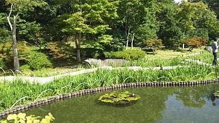 20171009昭和記念公園(その30)