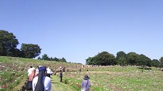 20171009昭和記念公園(その37)
