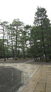 20170916妙心寺(その13)