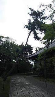 20170917太秦広隆寺(その13)