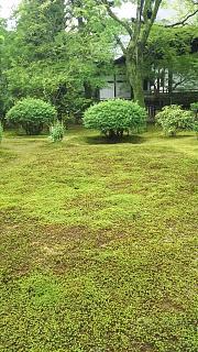 20170917太秦広隆寺(その19)