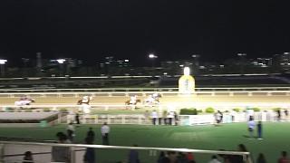 20171002大井競馬(その7)