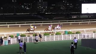 20171002大井競馬(その8)