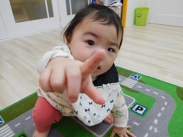 324hiyoko01.jpg