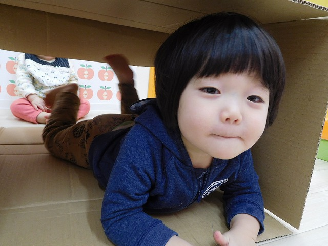 324hiyoko06.jpg