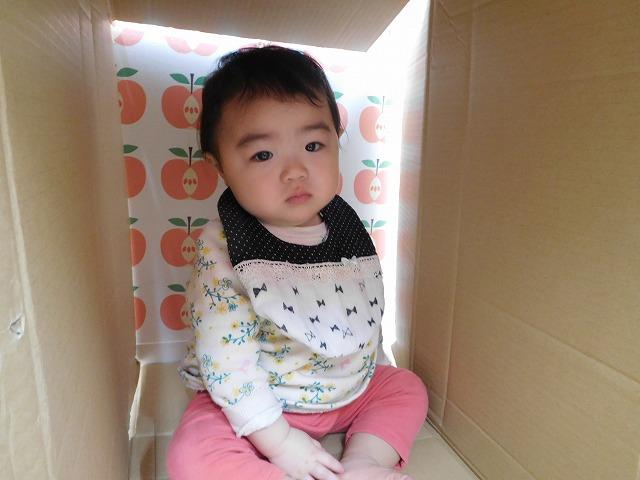 324hiyoko07.jpg