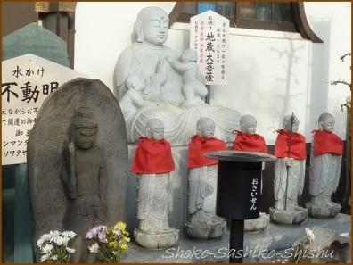 20180301  圓照寺  5    熊谷にて
