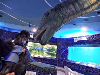天井から恐竜