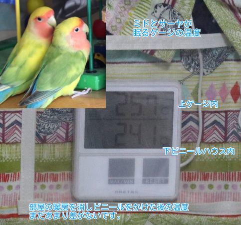 ②ミドサーヤ温度