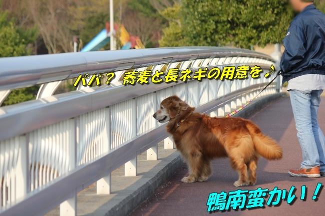防災公園梅 0151