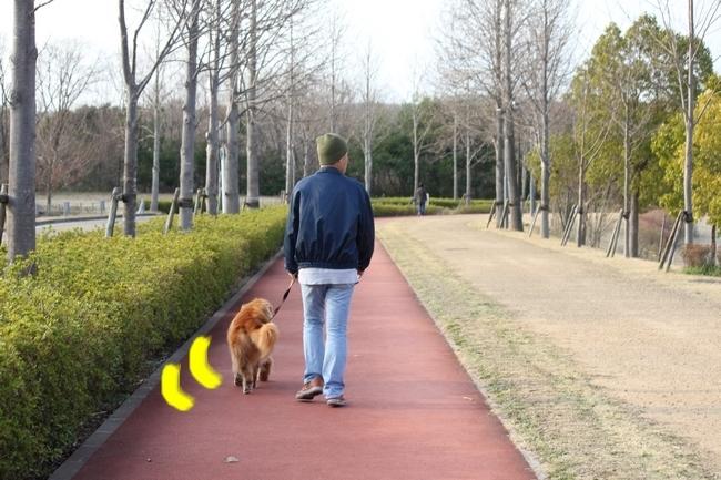 防災公園梅 0361