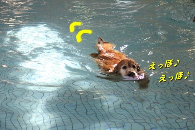 初泳ぎ孤独のグルメ 018