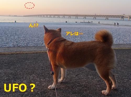 3UFOか