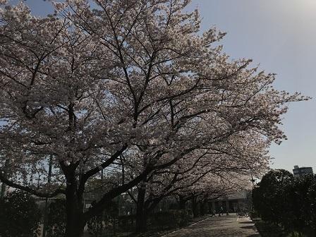 18-03-31_1438.jpg