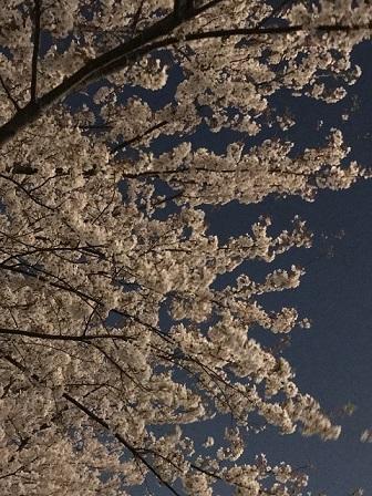 18-03-31_2003.jpg