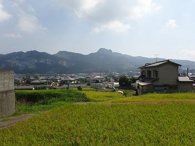 田んぼの向こうに五剣山