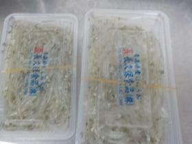 白魚2018220